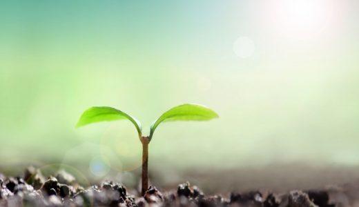 春先は危険?気分が落ち込みやすい「木の芽時」には、頑張らないことを頑張る!