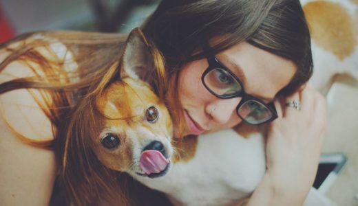 犬は悲しみを理解してくれる!?愛情ホルモンが分泌される!?動物からの優しいパワー